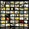 How magazine publishers are finding success in online video