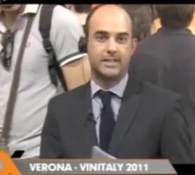 Vinitaly 2011 (Verona)